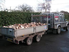 tree-surgeon-load20logs